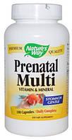 Витамины для беременных, Prenatal Multi, Nature's Way, 180 капс.