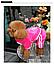 Костюм для собак Добаз, Dobaz Luxury velour розовый, фото 5