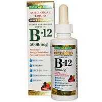 Natures Bounty, Sublingual Liquid, B12, 5,000 mcg, 2 fl oz (59 ml)