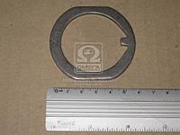 Шайба стопорная гаек подшипника ступицы передний колеса УАЗ (производитель РМЗ) 61-121168