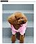 Костюм для собак Добаз, Dobaz Spotted dog розовый  , фото 5