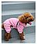 Костюм для собак Добаз, Dobaz Spotted dog розовый  , фото 6