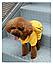 Костюм для животных Добаз , Dobaz Spotted dog желтый , фото 5