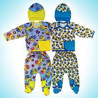 Комплект для новорожденных Миньон