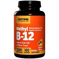 Jarrow Formulas, Метил В-12, Тропический вкус, 2500 мкг, 100 пастилок