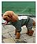 Костюм для животных Добаз , Dobaz  Chicago зеленый  , фото 6