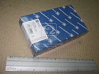 Вкладыши VAG 0,25 1,6 8V 96- (Производство KS) 77551610