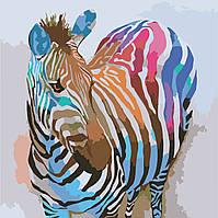 Картины по номерам / обложка. Животные. Зебра поп-арт 40х40 арт. КНО2463