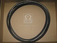 Ремень 2НВ-5362 RUB INDST Акрос 530/580 (Производство ЯРТ) 2/НВ-5362