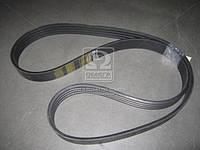 Ремень 4НВ-3612 RUB INDST Полесье (Производство ЯРТ) 4/НВ-3612
