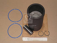 Гильзо-комплект Д 260.Е2 (Г(фосф.)( П(фосф.) +кольца+пал.+уплот.) гр.С ЭКСПЕРТ (МОТОРДЕТАЛЬ) 260-1000108-М-90