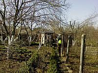 Опрыскивание сада. Лечение деревьев. Опрыскивание растений от болезней и вредителей.