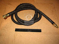 Шланг тормозной прицепа МАЗ L=2,45м (г-ш) (производитель Беларусь) 6422-3506380
