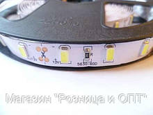 Лента светодиодная белая LED 5630 White - 5 метров в силиконе!Акция, фото 2