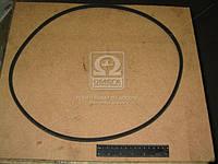 Ремень 8,5х8х1280 Д 120 21А1, 37Е, 144 (производитель ЯРТ) 8,5х8х1280