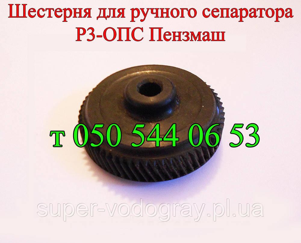 Шестерня сепаратора Р3-ОПВ Пензмаш