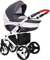 Дитяча коляска Coletto Florino Carbon 02