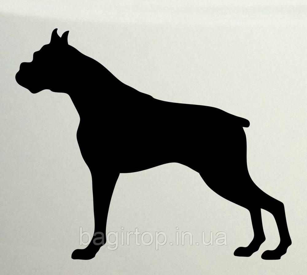 Виниловая наклейка на авто - Dog Boxser