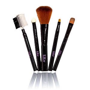 Профессиональный Набор кистей для макияжа 5 штук LILY