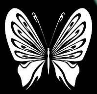 Виниловая наклейка- Бабочка 20 (от 10х10 см)