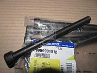 Болт головки цилиндров (производитель SsangYong) 6659901012