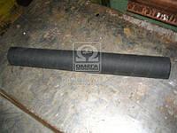 Патрубок радиатора МАЗ верхний (производитель Беларусь) 5336-1303010 А2
