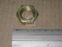Гайка упругой муфты (производитель Россия) 250659-П29