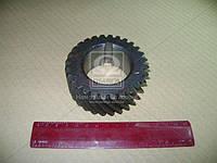 Шестерня вала коленчатого Д 65 ЮМЗ (производитель Украина) Д03-005