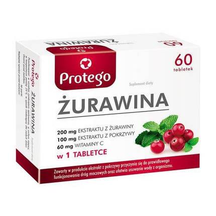 Żurawina Protego (Salvum) 60 caps (екстракт журавлини), фото 2