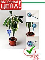 Шары для растений Aqua Globe