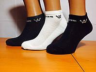 Носки мужские сетка укороченные «Adidas» Ассорти 40-44р.