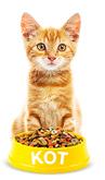 Для кошек