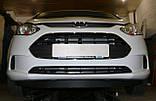 Декоративно-защитная сетка радиатора Ford B-MAX бампер, фото 2