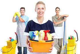 Товары для дома и быта Арго (Средства для уборки, стирки, дезинфекции, БИОПАГ)