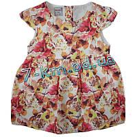 Платье для девочек Vit634 коттон 4 шт (9-24 мес)