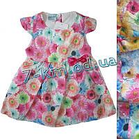 Платье для девочек Vit113 коттон 4 шт (9-24 мес)