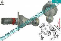 Штифт / втулка крепления амортизатора крышки багажника / телескопическая рейка 6025302109 Renault CLIO III
