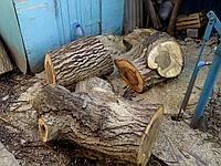 Услуги лесоруба Услуги вальщика леса, фото 1