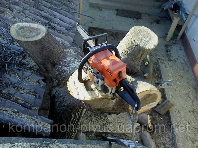 Работы по спиливанию деревьев в сложных условиях застройки, услуги автовышки, кронирование и распиливание деревьев на носимые части