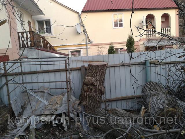 Вырубка деревьев на дачном участке. Обрезка деревьев бензопилой. Срезание аварийных опасных деревьев. Киев и область.