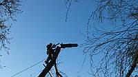 Удаление деревьев частями Срезание деревьев по частям Обрезка деревьев