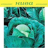 Атрия F1 (Atria F1) семена капусты средней Seminis 500 семян