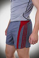 Мужские спортивные летние шорты