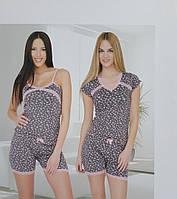 Пижама женская с шортами WILD LOVE