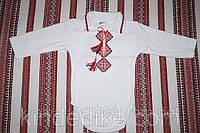 Одежда для новорожденных Боди Для мальчика, фото 1