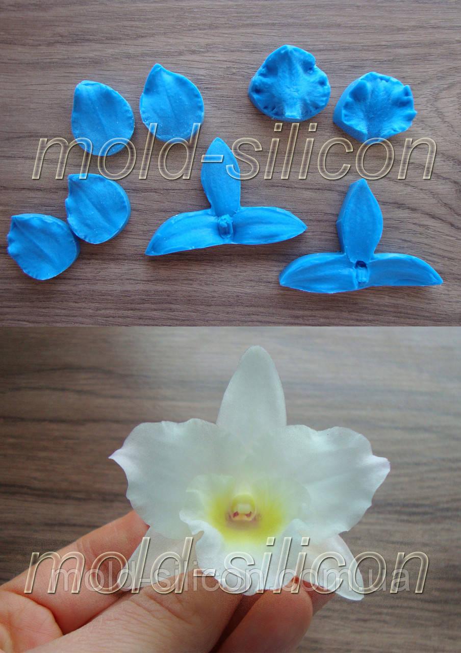 """Набор силиконовых вайнеров """"Орхидея дендробиум лепестки"""""""