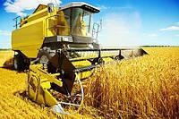 Программа компенсации стоимости сельхозтехники реальна.