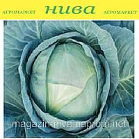 Агрессор F1 семена капусты белокачанной средне-поздней Syngenta 100 семян