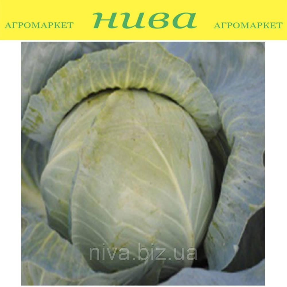 Аскания F1 семена капусты белокачанной средне-поздней Lucky Seed 500 семян