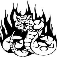 Виниловая наклейка на авто - Змея 9